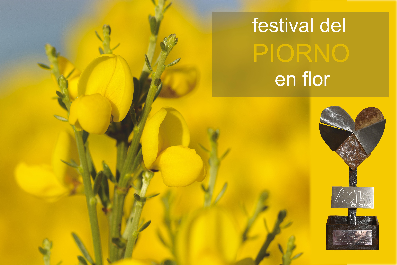 Premio a la Mejor Iniciativa Turistica Colectiva de la Diputación Provincial de Avila de 2016